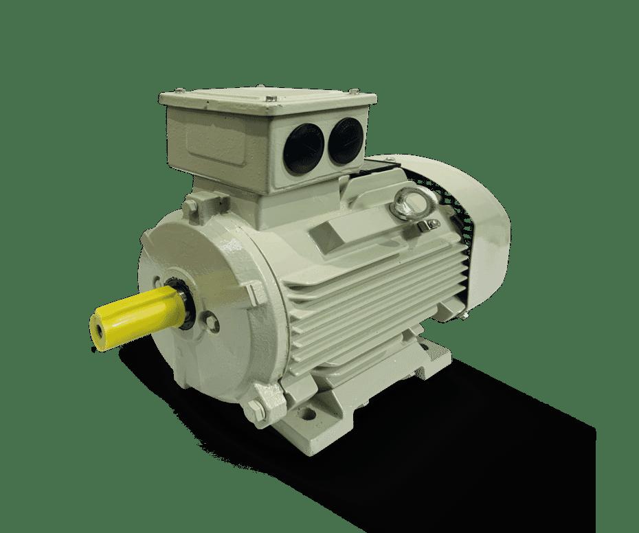 Cast Iron IE3 Motors
